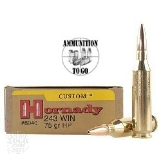 20rds - 243 Win Hornady 75gr. Hollow Point Ammo