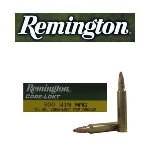 20rds - 300 Win Mag Remington 180gr. Core-Lokt PSP Ammo