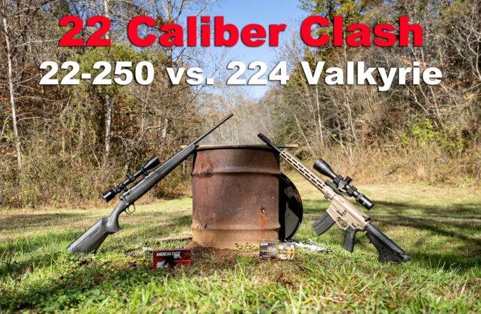 22-250 vs 224 valkyrie