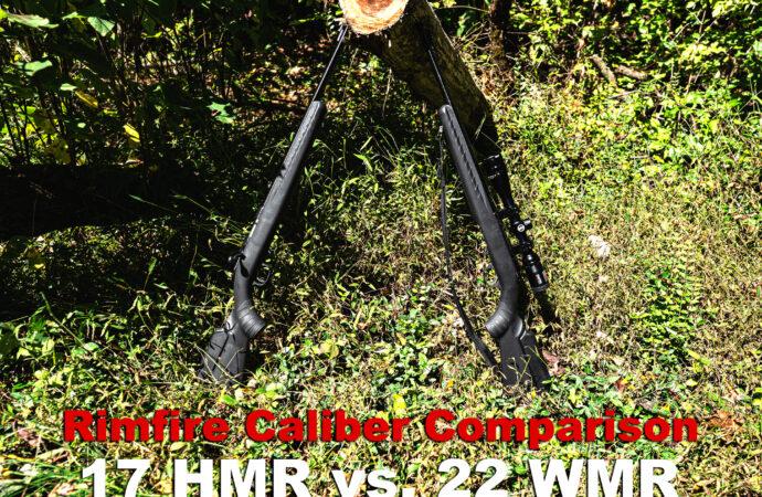 17 HMR vs 22 WMR rifle calibers