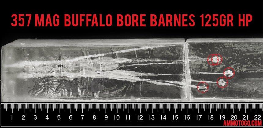 Buffalo Bore 125 Grain 357 Magnum ammunition fired into ballistic gelatin