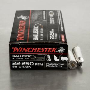20rds - 22-250 Rem Winchester Supreme 55gr. Ballistic Silvertip Ammo