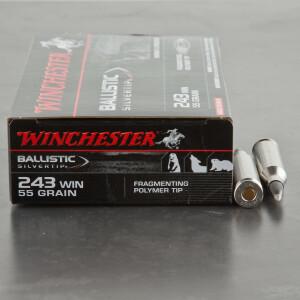 20rds - 243 Winchester 55gr. Supreme Ballistic Silvertip Ammo